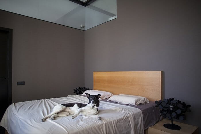 Minimalist bedroom with grey accent