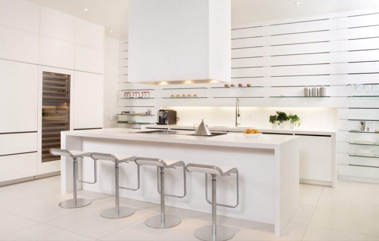 Sub zero modern white kitchen