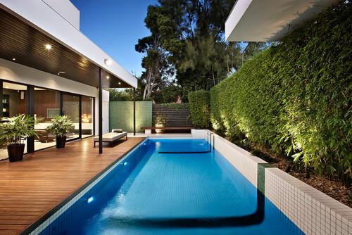 Hedge pool fence ideas