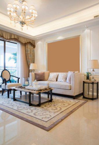 Luxurious living room flooring ideas