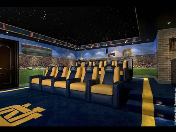 The Stadium Theme Home Theather