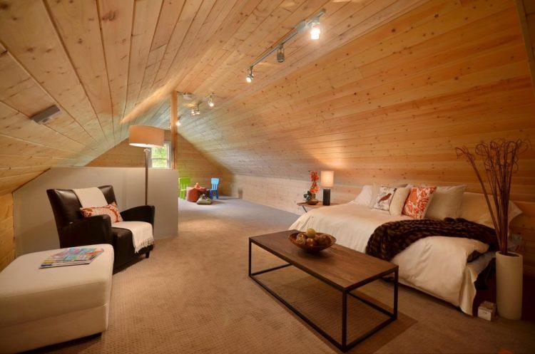Inside a treefamily bonus room ideas